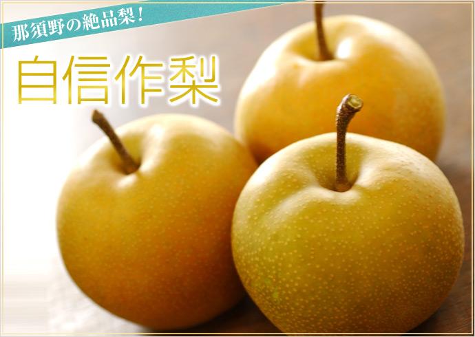 栃木県 那須野の絶品梨「自信作梨」