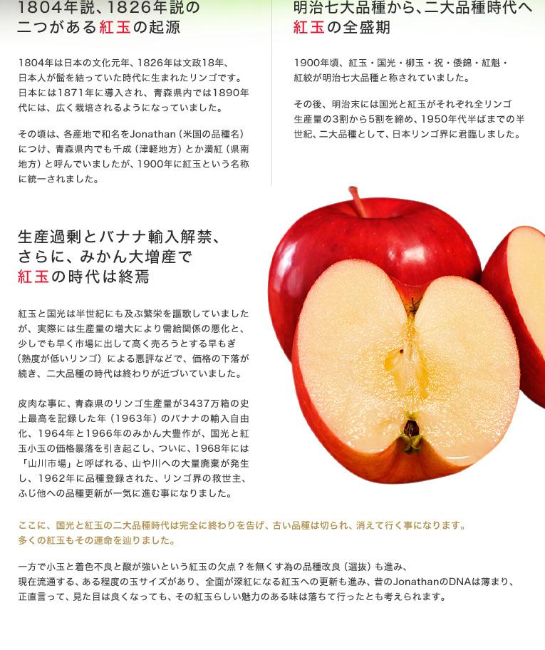 明治七大品種から、二大品種時代へ 紅玉の全盛期。1900年頃、紅玉・国光・柳玉・祝・倭錦・紅魁・紅絞が明治七大品種と称されていました。その後、明治末には国光と紅玉がそれぞれ全リンゴ生産量の3割から5割を締め、1950年代半ばまでの半世紀、二大品種として、日本リンゴ界に君臨しました。生産過剰とバナナ輸入解禁、更に、みかん大増産で紅玉の時代は終焉。紅玉と国光は半世紀にも及ぶ繁栄を謳歌していましたが、実際には生産量の増大により需給関係の悪化と、少しでも早く市場に出して高く売ろうとする早もぎ(熟度が低いリンゴ)による悪評などで、価格の下落が続き、二大品種の時代は終わりが近づいていました。皮肉な事に、青森県のリンゴ生産量が3437万箱の史上最高を記録した年(1963年)のバナナの輸入自由化、1964年と1966年のみかん大豊作が、国光と紅玉小玉の価格暴落を引き起こし、ついに、1968年には「山川市場」と呼ばれる、山や川への大量廃棄が発生し、1962年に品種登録された、リンゴ界の救世主、ふじ他への品種更新が一気に進む事になりました。