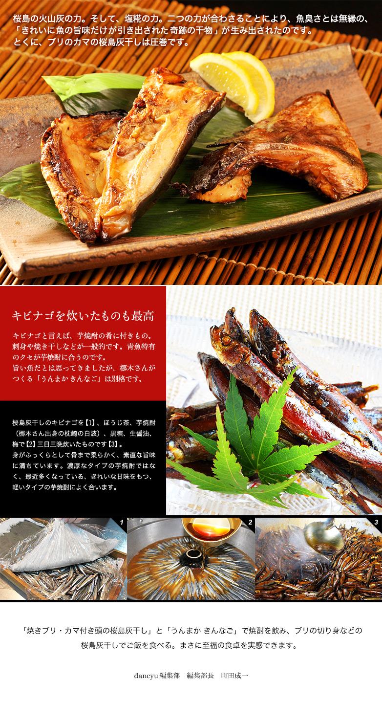 桜島の火山灰の力。そして、塩糀の力。二つの力が合わさることにより、魚臭さとは無縁の、「きれいに魚の旨味だけが引き出された奇跡の干物」が生み出されたのです。とくに、ブリのカマの桜島灰干しは圧巻です。  キビナゴを炊いたものも最高 キビナゴと言えば、芋焼酎の肴に付きもの。刺身や焼き干しなどが一般的です。青魚特有のクセが芋焼酎に合うのです。旨い魚だとは思ってきましたが、梛木さんがつくる「うんまか きんなご」は別格です。   桜島灰干しのキビナゴを【1】、ほうじ茶、芋焼酎(梛木さん出身の枕崎の白波)、黒糖、生醤油、梅で【2】三日三晩炊いたものです【3】。身がふっくらとして骨まで柔らかく、素直な旨味に満ちています。濃厚なタイプの芋焼酎ではなく、最近多くなっている、きれいな甘味をもつ、軽いタイプの芋焼酎によく合います。   「焼きブリ・カマ付き頭の桜島灰干し」と「うんまか きんなご」で焼酎を飲み、ブリの切り身などの桜島灰干しでご飯を食べる。まさに至福の食卓を実感できます。  dancyu編集部 編集部長 町田成一