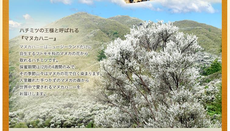 ハチミツの王様と呼ばれる『マヌカハニー』 マヌカハニーはニュージーランドだけに自生するフトモモ科のマヌカの花から取れるハチミツです。採蜜期間は12月の4週間のみで、その季節、山々はマヌカの花で白く染まります。人里離れた手つかずのマヌカの森から世界中で愛されるマヌカハニーをお届けします。