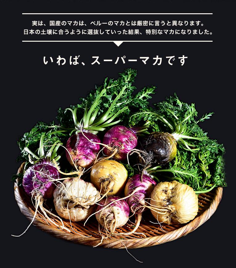 実は、国産のマカは、ぺルーのマカとは厳密に言うと異なります。 日本の土壌に合うように選抜していった結果、特別なマカになりました。 いわば、スーパーマカです