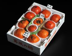 世界最古の完全甘柿が食べられる!奈良県産「御所柿」3種食べ比べ