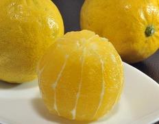 甘くて酸っぱい新感覚のレモン『レモネード』まとめ買いが断然お得!