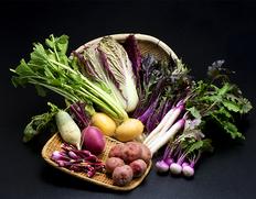 さぬきこだわり市 野菜セット