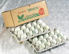 卵重の約30%が黄身 「緑の一番星」が今だけお買い得