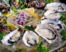 殻付き小粒「くにさきOYSTER」欧州スタイルで食べつくす