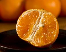 糖度15度で極めて甘い!柑橘の新星 長崎産「あすみ」