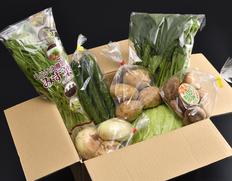 先着40名様に宮城のお米をプレゼント!おうちでみやぎフェア野菜料理編の食材セット