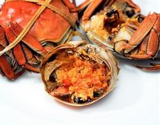 11月は上海蟹の一番オススメの時期!赤坂四川飯店の上海ガニ